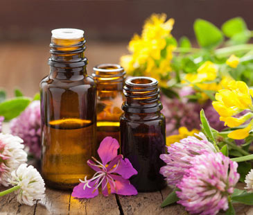 Essential Oil | Suppliers in UK Market