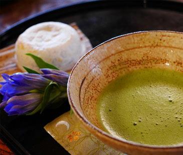 Herbal Tea | Suppliers In Uk