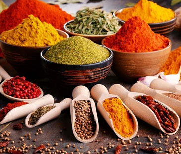 Seasoning and Flavouring Agents
